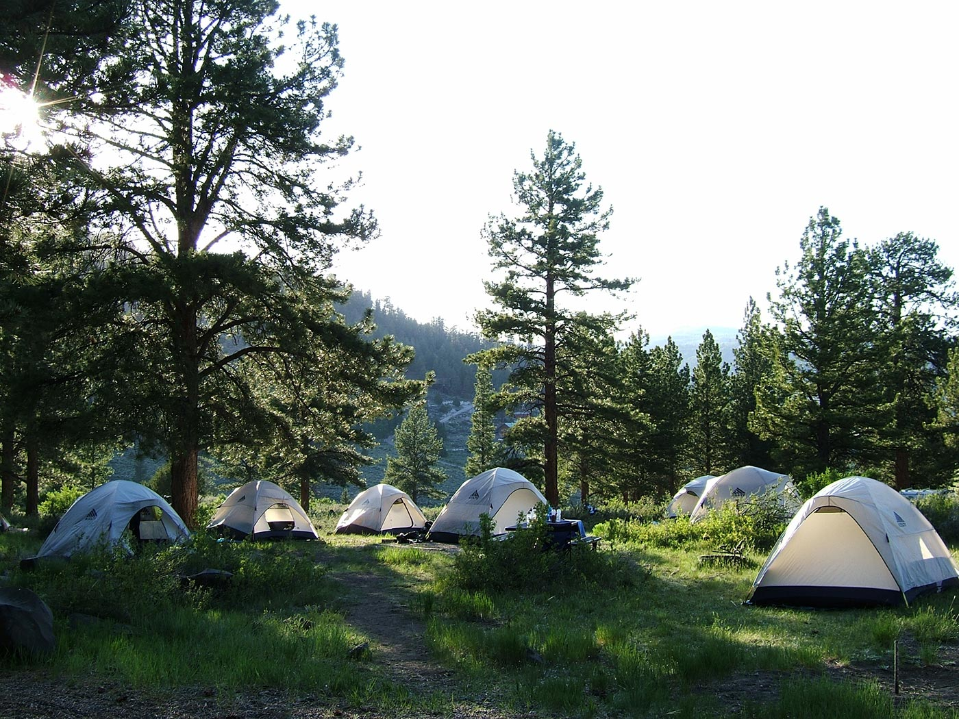 Camping Gear: Tents in a Meadow